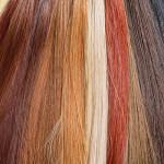 Osnovna dejstva o lasnih podaljških